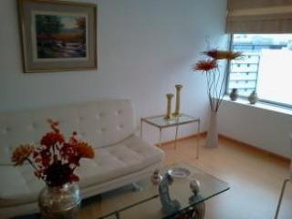 Great apartment in the heart of San Isidro - Three Oaks vacation rentals