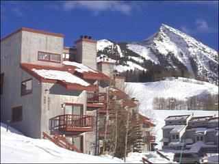 Quaint Butte Condo - Sunny and Spacious Layout (1241) - Crested Butte vacation rentals