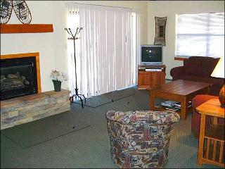Spacious and Inviting Condo - Centrally Located (1296) - Crested Butte vacation rentals