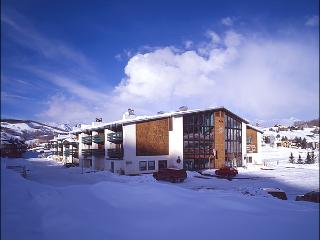 Perfect Condo for a Small Family - Hotel-Style Amenities (1333) - Crested Butte vacation rentals