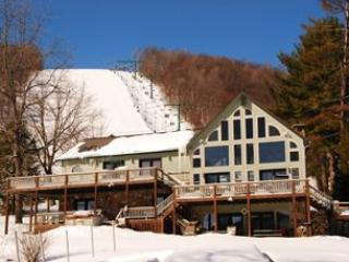 Lake Lift Lodge - Image 1 - McHenry - rentals