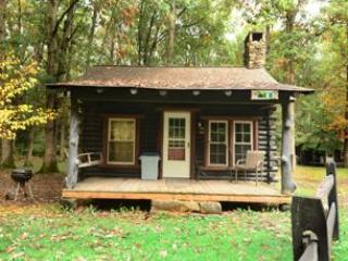 Swallow Falls Inn Cabin 1 - Oakland vacation rentals