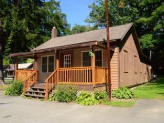Swallow Falls Inn Cabin 4 - Image 1 - Oakland - rentals
