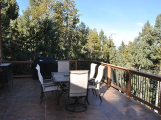 Ladybug Lodge, Mountain Home 13 mi from Red Rocks - Morrison vacation rentals
