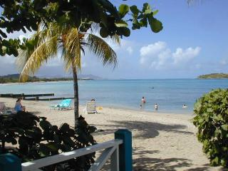 Chenay Bay-Small Boutique Resort, Amazing Beach - Christiansted vacation rentals