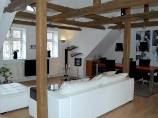 Lovly luxury apartment in Fredericia - Fredericia vacation rentals