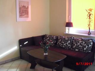 Nice Condo with Internet Access and Outdoor Dining Area - Gdansk vacation rentals