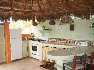 Beautiful House with Internet Access and A/C - Sayulita vacation rentals
