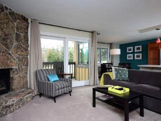 Phoenix at Steamboat - P113 - Steamboat Springs vacation rentals