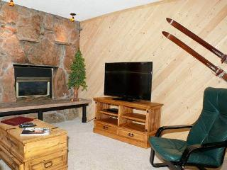 Storm Meadows East Slopeside - SE054 - Steamboat Springs vacation rentals