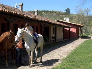 Charming House with Internet Access and Garden - Cuacos de Yuste vacation rentals