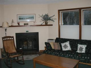 Cozy Apartment in Stowe with Internet Access, sleeps 2 - Stowe vacation rentals