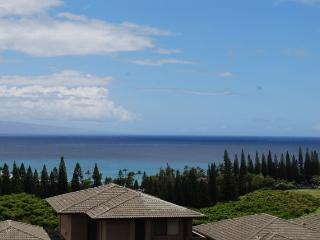 Romantic 1 bedroom Kapalua Apartment with Internet Access - Kapalua vacation rentals