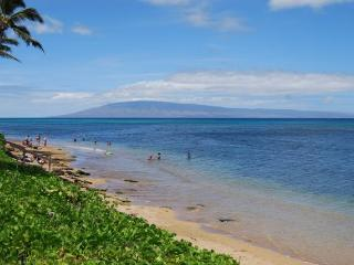 3 bedroom Apartment with Wireless Internet in Lahaina - Lahaina vacation rentals