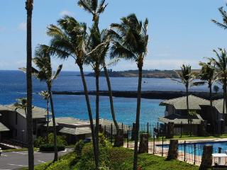 2 bedroom Apartment with Internet Access in Kapalua - Kapalua vacation rentals