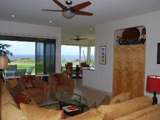 Cozy Kapalua Apartment rental with Internet Access - Kapalua vacation rentals