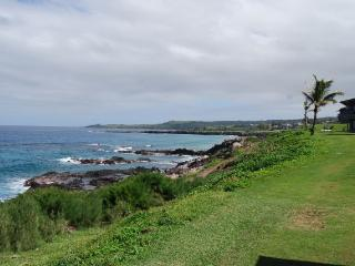 1 bedroom Apartment with Internet Access in Kapalua - Kapalua vacation rentals