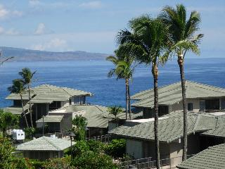 Kapalua Bay Villas  B33G1 - Kapalua vacation rentals