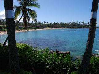 Nice Condo with Shared Outdoor Pool and Television - Napili-Honokowai vacation rentals