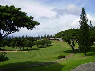 Kapalua Golf Villas  G15T1 - Kapalua vacation rentals