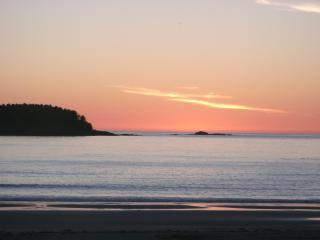 The Sea Lion Oceanfront Chesterman Beach Tofino - Tofino vacation rentals