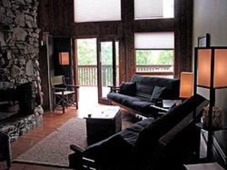 Lodge Living Room - Shoji Lodge - Asheville - rentals
