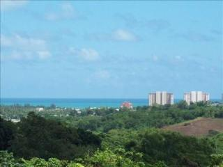 Affordable Fusion of Beaches and Mountains - Luquillo vacation rentals