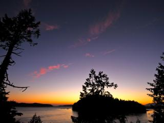 Gold's Cottage - Tofino vacation rentals