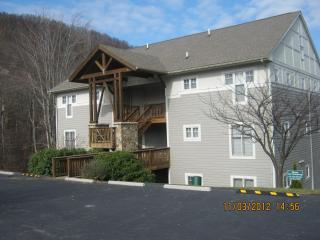 Hawks Peak Condo in Beautiful Seven Devils - Seven Devils vacation rentals