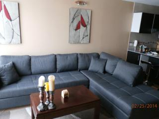 Modern Spacious Luxurious Apt, 6 blks to El Centro - Cuenca vacation rentals