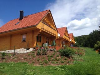 Cozy House with Internet Access and Dishwasher - Bad Sachsa vacation rentals