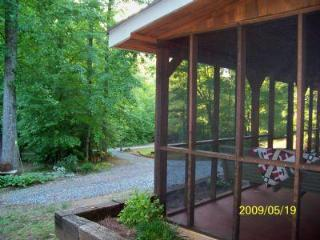 Forest Farm Cabin - Helen vacation rentals
