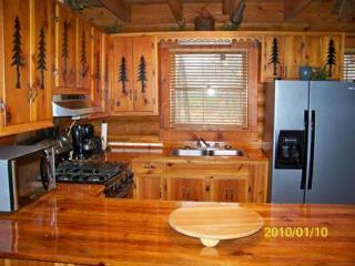 Mauldin Creek Cabin - Helen vacation rentals
