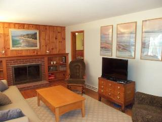 Nice House with Internet Access and A/C - Dennis Port vacation rentals