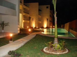 Outstanding PENTHOUSE 3 Bedrooms 2 Bathrooms - Puerto Aventuras vacation rentals