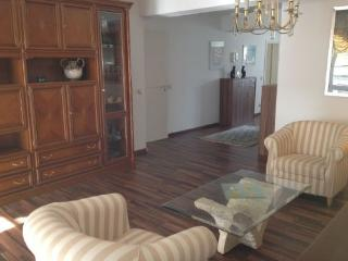 LLAG Luxury Vacation Apartment in Baden Baden - 861 sqft, modern furnishings, rustic feel, bright (#… - Black Forest vacation rentals