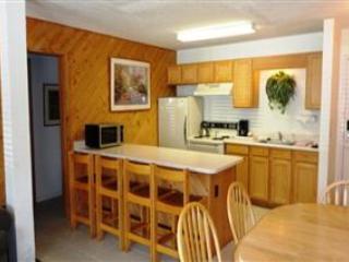 Donner Lake Village 121 - Image 1 - Truckee - rentals