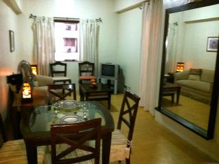 Junior Suite in a One-Bedroom Set-up in Eastwood (Eastwood vacation Suites) - Quezon City vacation rentals