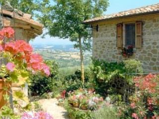 Romantic Hilltop Villa-Farmhouse - Stunning Views - Caprese Michelangelo vacation rentals