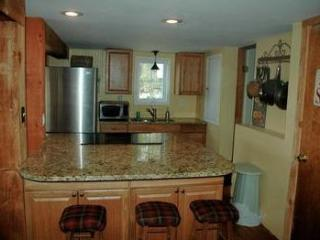 Keuka Lake:  Private, Updated, Steps to the Water! - Keuka Park vacation rentals