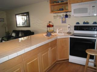Perfect Little Ski Condo -  1 Bedroom In East Vail - Vail vacation rentals