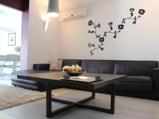 Modern Apartment  in Pula with Pool - Stinjan vacation rentals