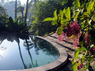 Luxurious, rice-field valley view villa,Ubud,4BR - Ubud vacation rentals