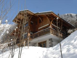 Charming Chalet Apartment French Alps Ski Resort - La Cote-d'Arbroz vacation rentals