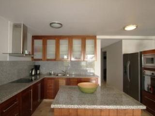 Waterfront Villa! Dive Out Front Door! - Kralendijk vacation rentals