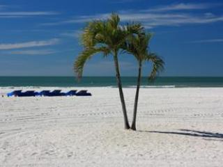 Park Shore Boutique Apartments - Saint Pete Beach vacation rentals