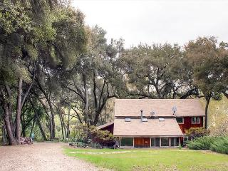 Big Sur Feeling in Paso Robles Wine Region Wooded Setting off Hwy 46 West - Templeton vacation rentals