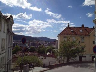Bergen City Centre; Great view! Very central ! - Bergen vacation rentals