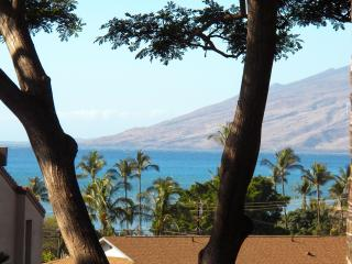 Maui Vista with PRIVATE loft! - Kihei vacation rentals