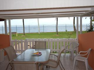 Gorgeous 3 bedr/2bath  beachfront villa... idyllic - Dorado vacation rentals